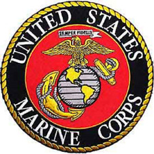 """USMC    """"UNITED STATES MARINES """"   Gold / Silver  10 inch Round Patch"""