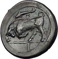 SYRACUSE in SICILY 317BC Agathokles Nymph Bull Genuine Ancient Greek Coin i55461
