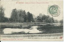 CPA 45 - ORLEANS - Château de la Source - la source du Loiret à Olivet