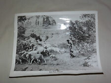 VINTAGE OLD TV MOVIE AND NOW MIGUEL GOAT HERDER PHOTO