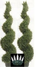 """Two 5' 4"""" Artificial Wide Rosemary Spiral UV Topiary Trees Christmas Lights 6 3"""