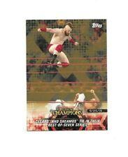 2018 TOPPS WWE CESAR & SHEAMUS BRONZE PARALLEL WRESTLING CARD #2