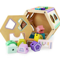 Toddler Montessori Toys Wooden  Puzzle Blocks Sorting Kids Wooden Toy