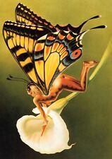 Chris Achilleos Mariposa Chica Fantasía Arte Erotica nueva impresión de arte poster YF1278