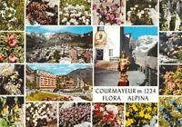 Cartolina Courmayeur 19 vedute flora alpina panorama