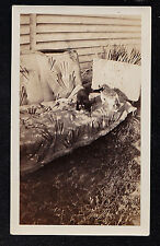Antique Vintage Photograph Two Cats / Kittens Sitting on Couch in Backyard