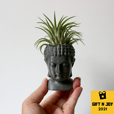Buddha Head Planter Figure Air Plant Holder Succulent Pot Garden 3D Print Small