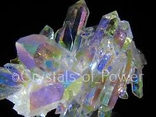 ONE XL POWERFUL STARBRARY ANGEL AURA LEMURIAN SEED QUARTZ CRYSTAL POINT CLUSTER!