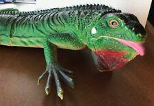 26� long life-like plastic iguana lizard