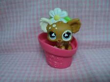 Discontinued Rare LPS Littlest Pet Shop Chihuahua W/Accessory Excellent