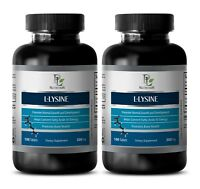energy boost for workout - L-LYSINE 500MG 2B - l-lysine bulk - 2 Bottles