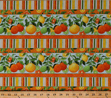 Oranges Lemons Limes Citrus Fruit Food Stripes Cotton Fabric Print BTY D584.38