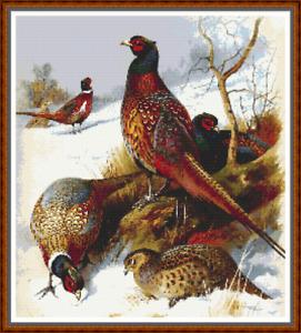 "'PHEASANTS IN WINTER' Cross Stitch Chart (15""x18"") Birds/VERY Detailed/Thorburn"