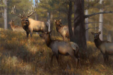 """In the Middle of Things"" Kyle Sims Artist Proof 30"" Giclee on Paper - Elk"