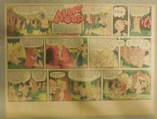 Alley Oop Sunday by VT Hamlin from 5/24/1953 Half Page Size