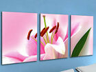 PINK FLOWER LARGE CANVAS PRINTS SET OF 3 45x60 (ON FRAME) WALL ART