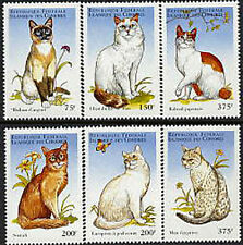 Comoro Is, Sc #817-22, MNH, 1998, Topical Stamps, Cats