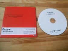 CD POP Gaggle-Army of Birds (1) canzone PROMO transgressive CB