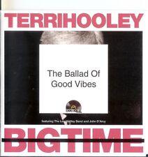 Terri Hooley RSD 2013 Ballad Of Good Vibrations CD single