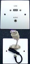 AV Wall Face Plate, Metal, 3.5mm Stereo Audio Jack / USB 2.0 A-type sockets
