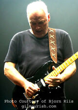 SUEDE GUITAR STRAP FEATURED ON GILMOUR-ISH DOT COM-REGULAR LENGTH