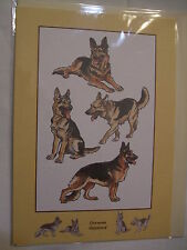 CARTE + ENVELOPPE - chien   BERGER ALLEMAND