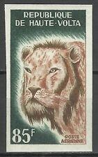 Haute Volta Upper Volta Lion Panthera Leo Lowe Non Dentele Imperf Proof ** 1965