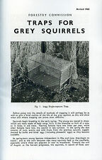 squirrel traps trapping vermin grey pest forestry gamekeeping shooting