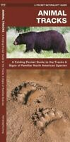 Animal Tracks : A Folding Pocket Guide to the Tracks & Signs of Familiar Nort...