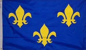 New Orleans Fleur De Lis Blue Flag Banner 8x12 foot embroidered nylon banner