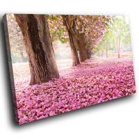 SC394 Cherry Blossom Trees Pink Cool Nature Canvas Wall Art Large Picture Prints