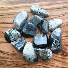 Large Silver Leaf Jasper Tumblestones 100g Wholesale Crystal Therapists Healers
