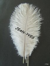 "15 WHITE OSTRICH FEATHERS 6-8""L"