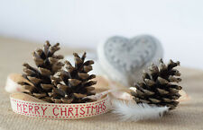 Angel Christmas Card. Contemporary Angel Feather & Fur Cones Christmas Card.