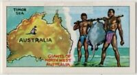 Native Aborigines Of North West Australia Fishing Vintage Ad Trade Card