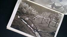 Josef Sudek Photographie digitale 1956 | tchèque avant-gardiste photographie modernisme 232 plaques