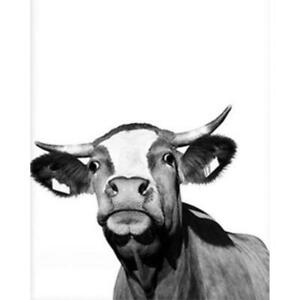 Cow DIY Oil Painting Paint By Numbers Kits with Brushes Acrylics Painting Kits