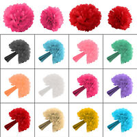 10 Pack Mixed Tissue Paper Pompom Pom Poms Hanging Garland Wedding Party Decor