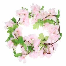 Dried Pressed Natural Fresh Flower Sakura Handcrafts Accessories Decor Floral
