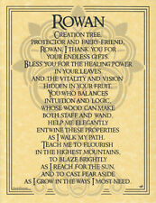 Rowan Tree Parchment Page for Book of Shadows, Altar!