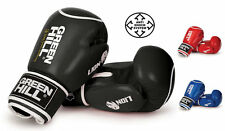 Greenhill Leather boxing gloves Lion training sparring punch bag