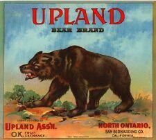 Ontario Upland Grizzly Brown Bear #2 Orange Citrus Fruit Crate Label Art Print