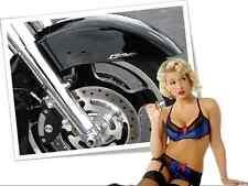 1300 Fender / Saddlebag Emblems Honda VTX 1300 Interstate Stateline
