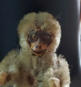 """ANTIQUE  SHUCO MOHAIR MONKEY YES NO MONKEY JOINTED 2 1/4"""""""