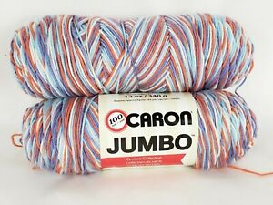 (Pack of 2) Caron Century Collection 12oz Floral Ombre 16004   057355407572