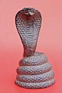 Snake King Cobra Statue Sculpture Ship Figure Large Predator Deadly Figurine 13