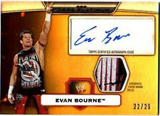 WWE Evan Bourne Platinum 2010 Autographed Relic GOLD 3 Color Swatch SN 22 of 25