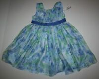 New Gymboree Watercolor Blue Floral Dress Size 12-18 Months NWT Family Brunch
