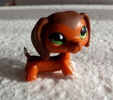 figurine PETSHOP original chien dog teckel daschund 675   pet shop LPS