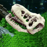 1Pc New Style Realistic Dinosaur Tyrannosaurus Scale Skull Model Collectable